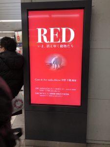 RED いま、消えゆく動物たち
